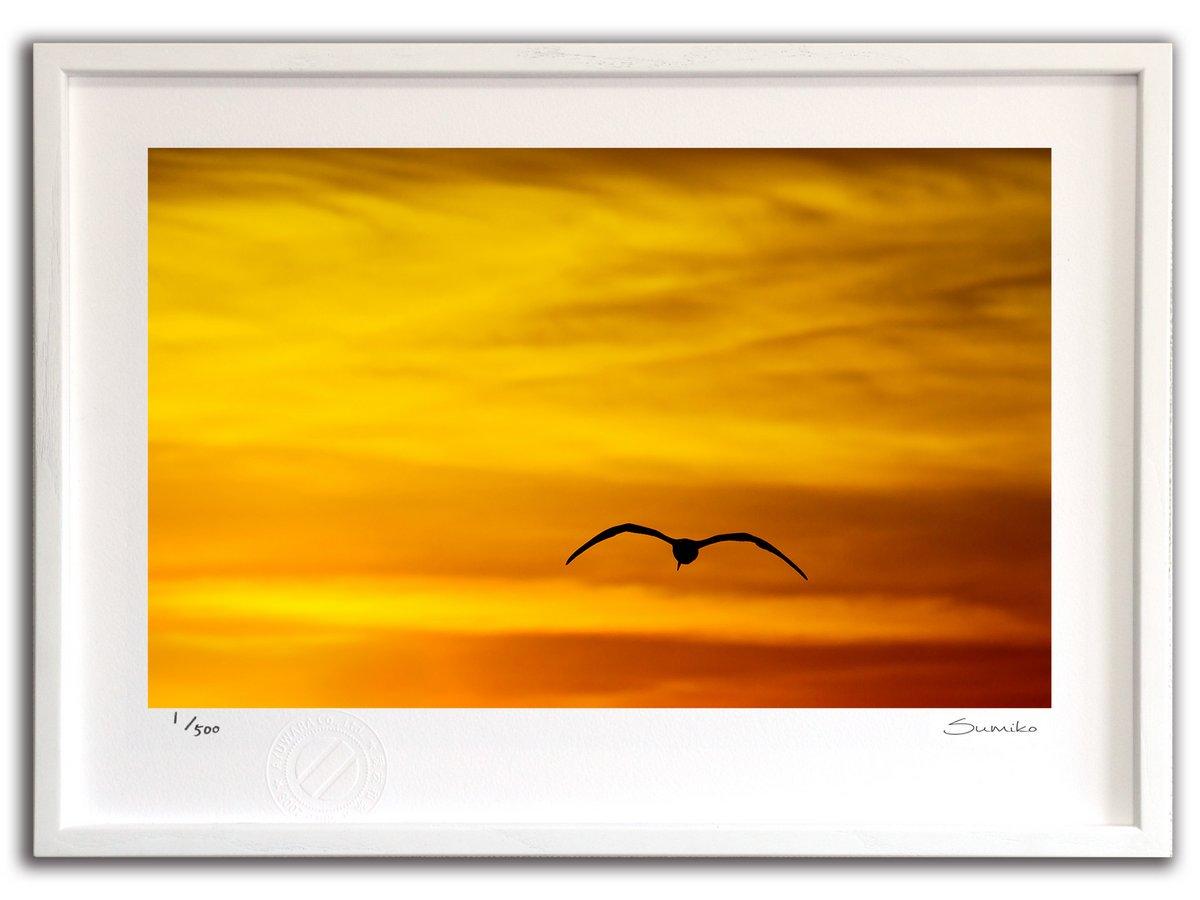 【版画 絵画】夕日とカモメ(スミコ スコット)/インテリア 壁掛け 額入り アート アートパネル アートフレーム