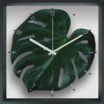 《掛時計》Monstera deliciosa / Green(モンステラ デリシオサ/緑)