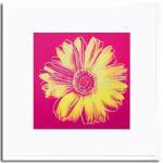 《アートフレーム》Daisy, c. 1982(fuchsia and yellow)