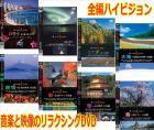 ザ・ハイ美ジョンシリーズDVD 8枚セット【P1111】