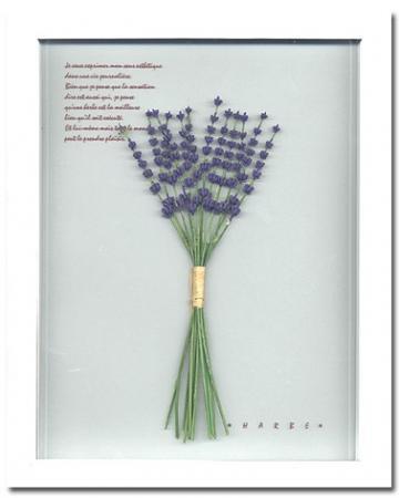《プラント アートフレーム》lavender(ラベンダー)