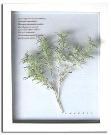 《プラント アートフレーム》Artemisia(アルテミシア)