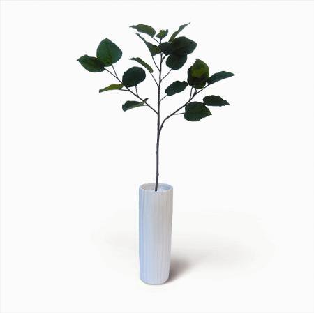 《人工観葉植物・造花》Ficus Umbellata(フィカス ウンベラータ)