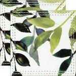 【コースター】ヴェルト デコル 〜テーブルウェア シリーズ〜 「コースター2枚セット(ネイチャー グリーンA)」ゆうパケット