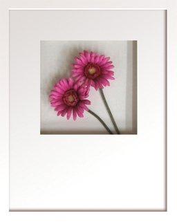 《フラワーフレーム》Hana concept frame Gerbera/rose(ガーベラ/ローズ)