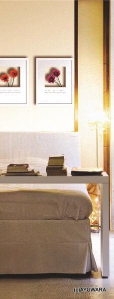 《フラワーフレーム》Hana concept frame Anthurium(アンスリウム)