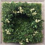 《グリーンフレーム》Shibafu Wreath 5(芝生 リース5)