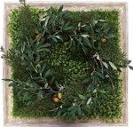 《グリーンフレーム》Shibafu Wreath 6(芝生 リース6)