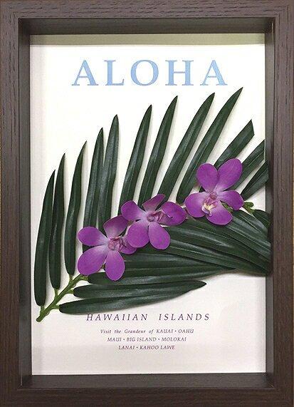 《フラワーフレーム》Aloha Frame(アロハ フレーム)(ゆうパケット)