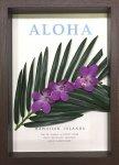 《フラワーフレーム》Aloha Frame(アロハ フレーム)