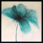 《アートフレーム》エマ・フォレスター フローラル・バースト1(Emma Forrester Floral Burst I)