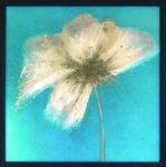 《アートフレーム》エマ・フォレスター フローラル・バースト2(Emma Forrester Floral Burst II)
