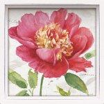 絵画 ロハス ミニアートフレーム リサ オーディット「ピンク ガーデン1」/インテリア かわいい 壁飾り