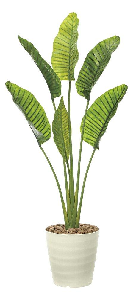 ガーデングリーン オーガスタL1.8(ポリ製) 〔ガーデンタイプ〕 観葉植物 おしゃれ ギフト 御祝 プレゼント アートグリーン 枯れない 鉢植え 屋外 開業祝 開店祝 店舗 展示場 引越祝 贈答