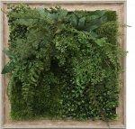 グリーンフレーム 芝生 2 インテリア 壁掛け 額入り リビング 玄関 プレゼント ギフト 光触媒 消臭 おしゃれ 飾る フェイクグリーン 3Lサイズ