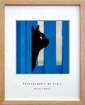 アートフレーム ゆうパケット フレンチ フォトグラフィー ブラック キャット(黒猫) インテリア 壁掛け アート リビング 玄関 トイレ プレゼント モダン 飾る 写真 風景 Sサイズ
