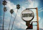 《キャンバスアート》ヤシの木とサーフィンサイン(surfing sign with palm trees) カリーノ(Carino) 700x500mm