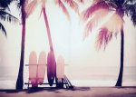 《キャンバスアート》サーフボードとヤシの木(Surfboard and palm tree) カリーノ(Carino) 700x500mm