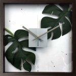 《掛け時計》F-style クロック モンステラ デリシオサ