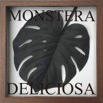 《リーフパネル》F-style フレーム モンステラ デリシオサ ブラック