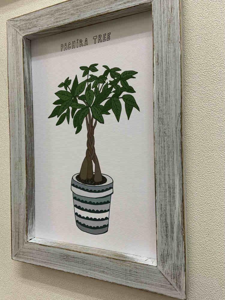 《絵画》ホームプラントチャイニーズ・マネー・プラント