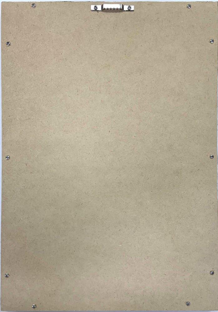 《絵画》ゆうパケット ホームプラントメディニラ・マグニフィカ