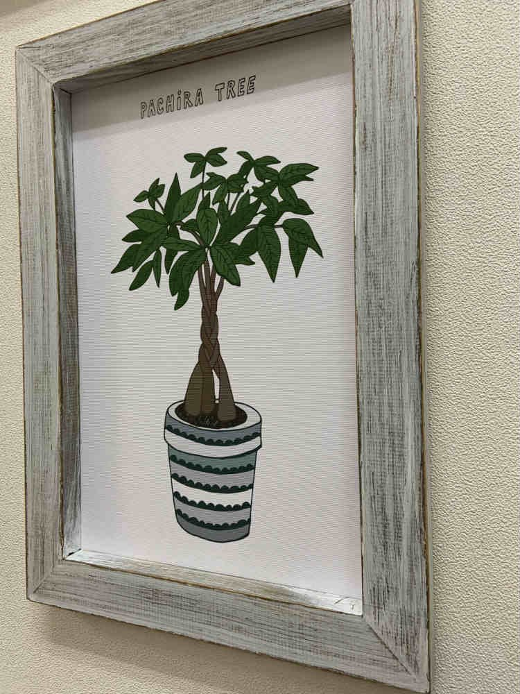 《絵画》ホームプラントサンスベリア