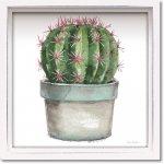 絵画 ロハス ミニアートフレーム リサ オーディット「ミックス グリーン サキュレント2」 額入り かわいい インテリア 壁飾り 絵 壁掛け 植物 癒やし ギフト リビング 玄関 廊下 プレゼント