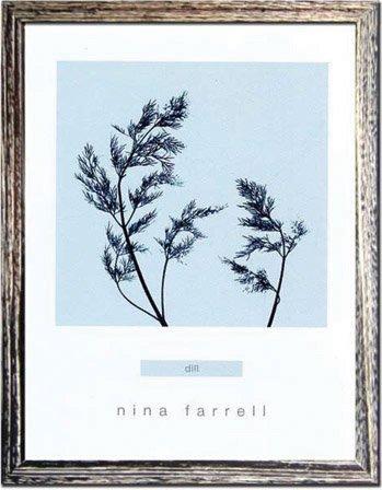 《ハーブ アートフレーム》Nina Farrell Dill(ディル)