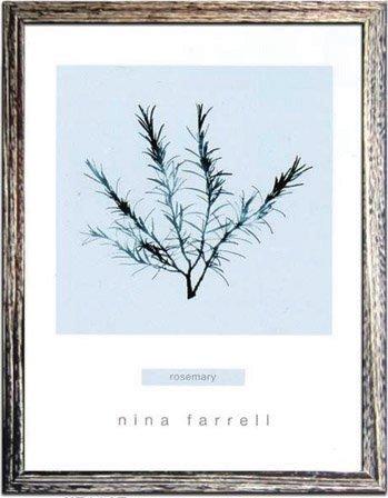《ハーブ アートフレーム》Nina Farrell Rosemary(ローズマリー)