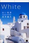 2010年カレンダー White/白い風景 壁掛Mサイズ