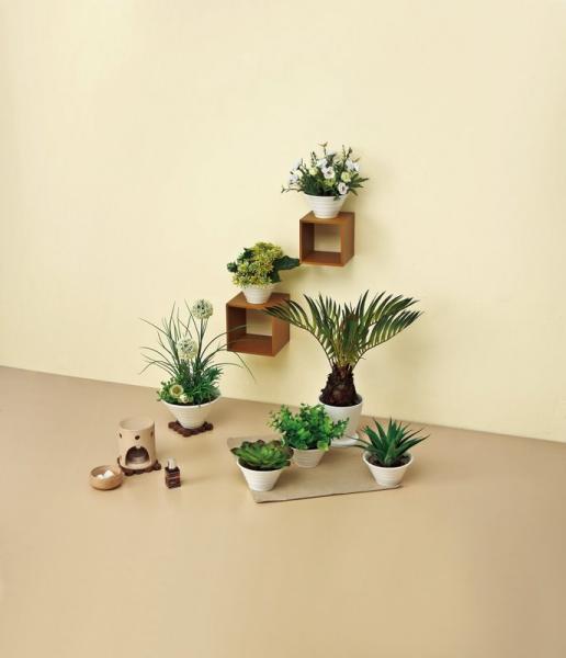 《人工観葉植物》クリエイティブフラワーアート サン・モス(グリーン)
