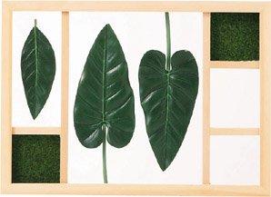 《リーフパネル》グリーン アート フレーム Sサイズ・アンスリウム