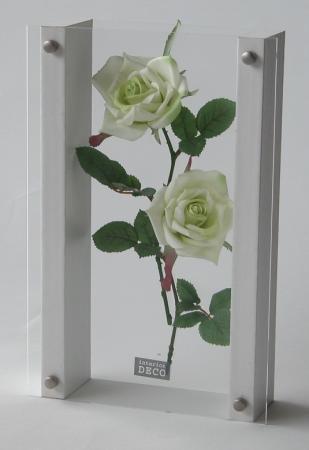 《フラワーフレーム》QUEEN'S FLOWER 0121(バラ)