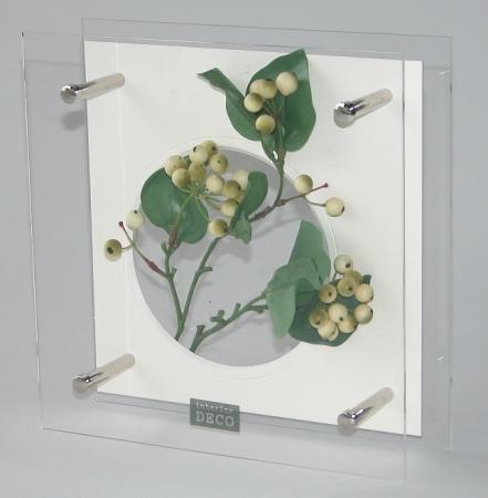 《フラワーフレーム》HEARTFUL PLANTS 0126(サンキライ)