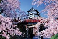 《ジグソーパズル》桜咲く弘前城