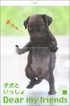 2011年カレンダー 子犬といっしょ/Dear my friends 壁掛Mサイズ