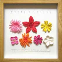 《プラントフレーム》musee de Fleur Vivid Color(ゆうパケット)