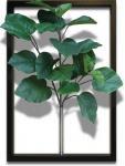 《リーフパネル》F-style Tuinie (エフスタイル・ツイーニー)Ficus Umbellata(フィカスウンベラータ)