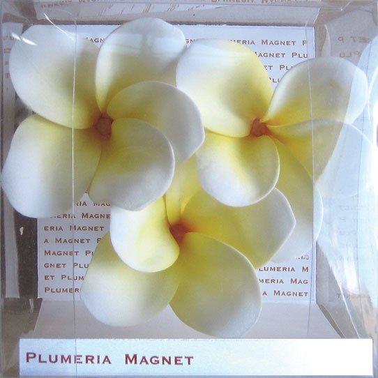 《プルメリアマグネット》Plumeria Magnet Yellow