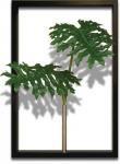 《リーフパネル》F-style Tuinie (エフスタイル・ツイーニー)Philodendron bipinnatifidum