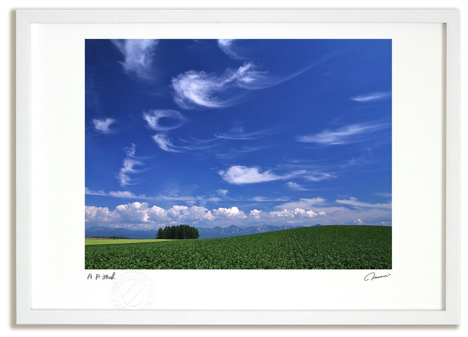 《アートフォト》【ベスト】青空と雲/美瑛町〔富良野・高橋真澄〕(レンタル対象)