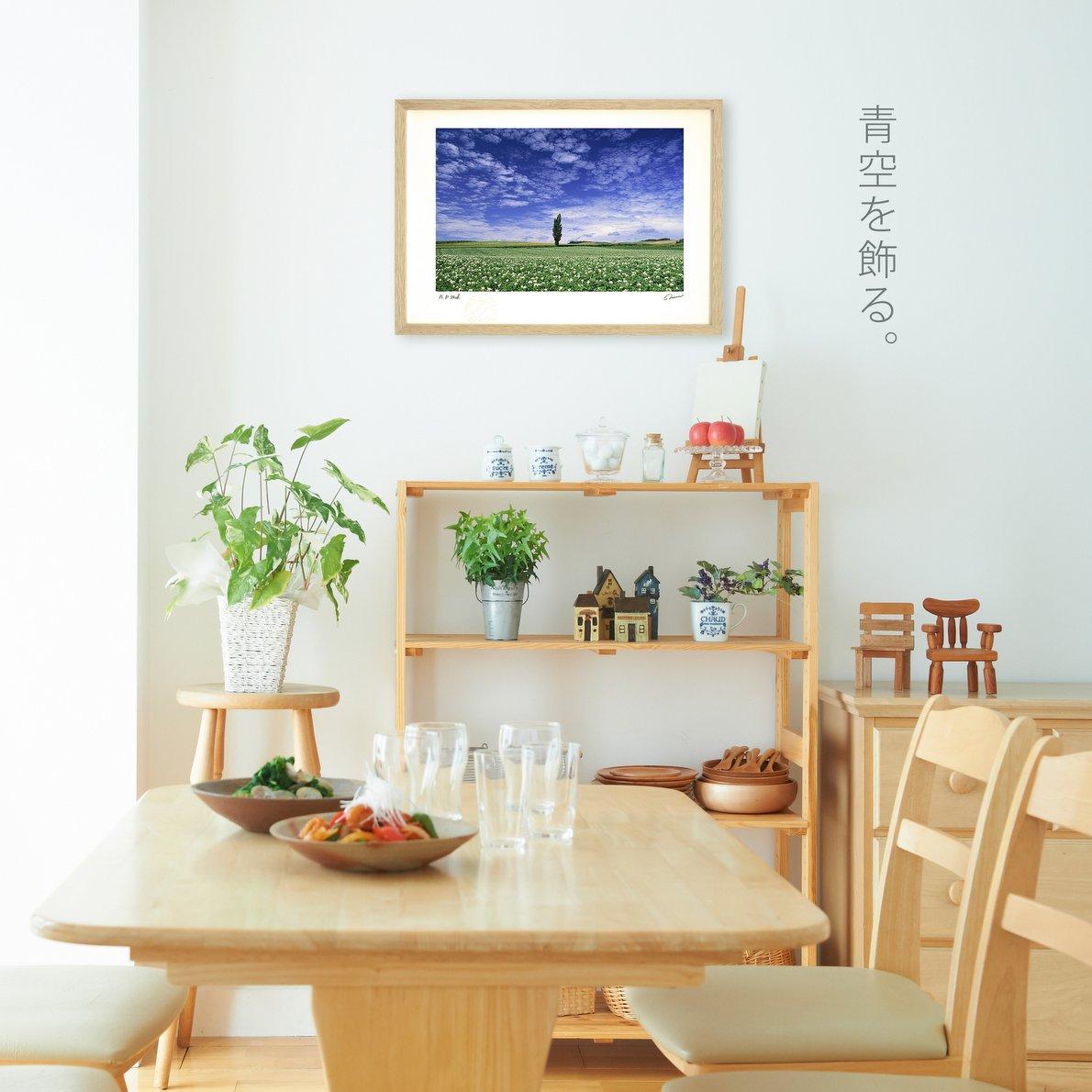 《アートフォト》キガラシ畑と雲/美瑛町〔富良野・高橋真澄〕(レンタル対象)