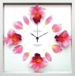 《時計》Cattleya clock Pink(カトレヤ/洋ラン クロック ピンク)