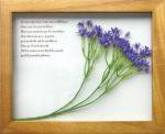 《プラントフレーム》PLANTE Frame Ster flower/blue(ゆうパケット)