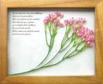 《プラントフレーム》PLANTE Frame Ster flower/pink(ゆうパケット)