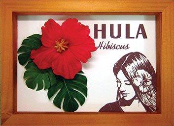 《ハイビスカスフレーム》Hibiscus Mini Girl/ Red(ガール/レッド)(ゆうパケット)