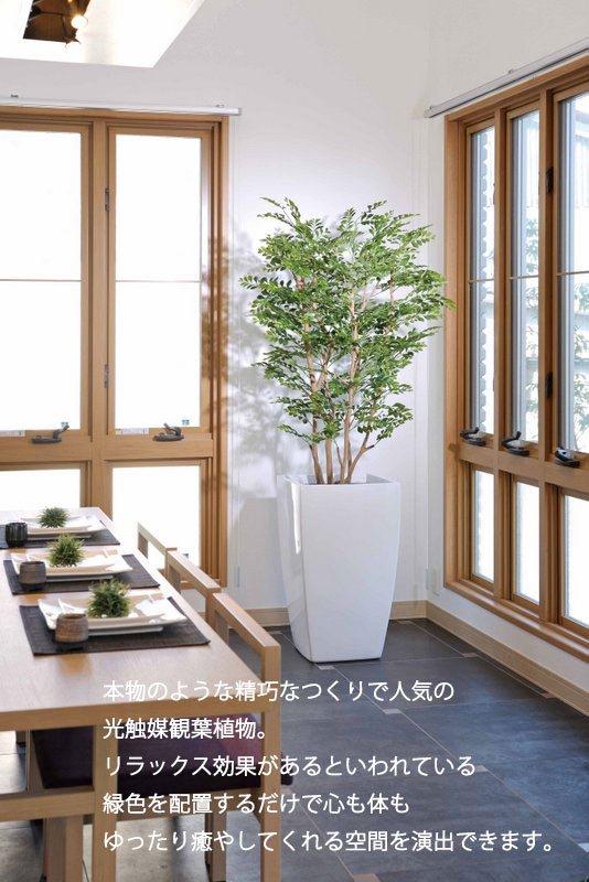 《光触媒観葉植物》アートゴールデンツリー1.8〔フロアタイプ(ハイサイズ)〕人気作品