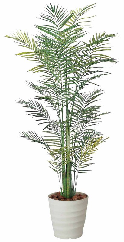 《光触媒観葉植物》トロピカルアレカパーム2.1〔フロアタイプ(ハイサイズ)〕