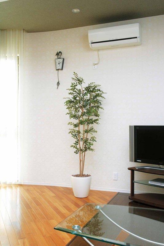 《光触媒観葉植物》トネリコ1.7〔フロアタイプ(ハイサイズ)〕人気作品